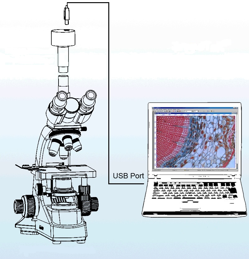 Видеоокуляр установлен на тринокулярный микроскоп.jpg